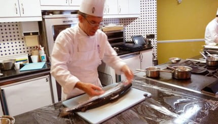 How to fillet a salmon - Food Gypsy