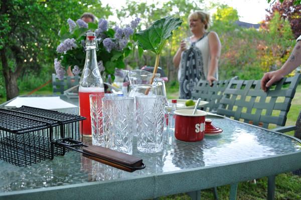 Backyard Cocktails - Food Gypsy