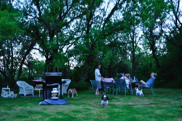 Backyard fun - Food Gypsy